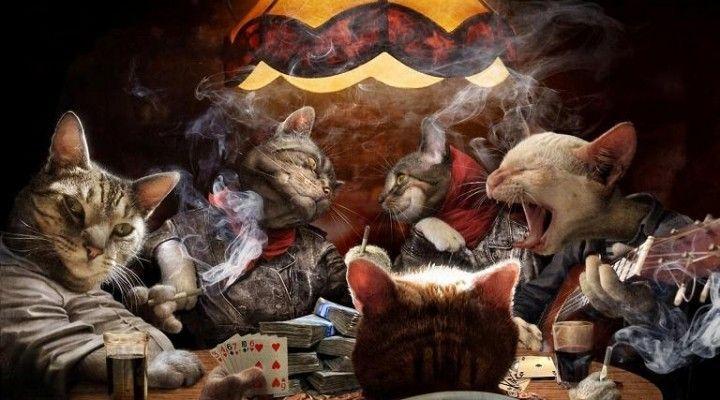 4 Consejos de póker para jugar en el turn