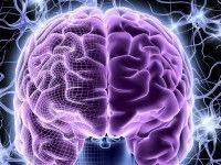 ¿Cómo funciona el cerebro al jugar al póker?
