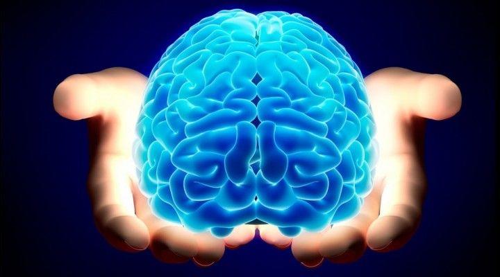 Mente y el póker, ¿Como nos engaña nuestro cerebro? Maestros del Poker